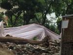 Hà Nội: Đâu là nguyên nhân khiến cây đổ tại công trình Dự án Đầu tư xây dựng Bảo tàng Công nhân và Công đoàn Việt Nam?