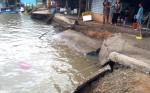 Di dời nhiều nhà dân có nguy cơ sạt lở ở Cà Mau