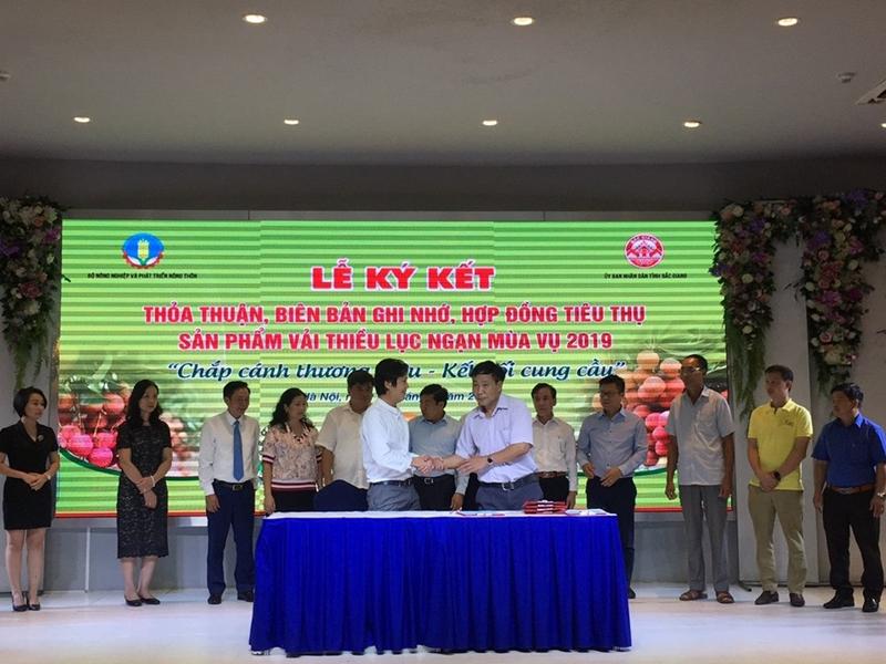 Chính thức khai mạc Tuần lễ vải thiều Lục Ngạn tại Hà Nội