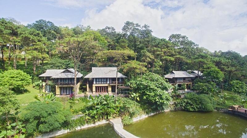 Góp ý việc chuyển đổi mục đích dự án Trồng, chăm sóc, bảo vệ rừng và kết hợp du lịch sinh thái tại Hà Nội