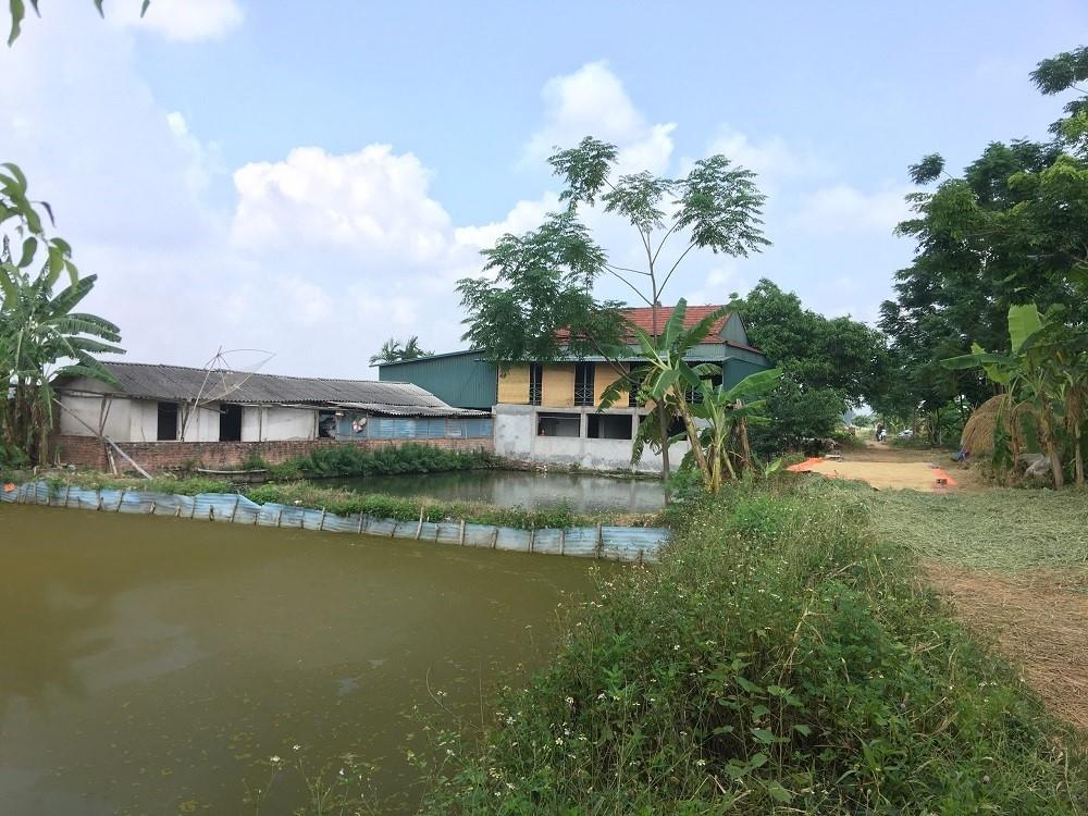 Vĩnh Tường (Vĩnh Phúc): Xã Chấn Hưng tăng cường xử lý tồn tại vi phạm đất đai