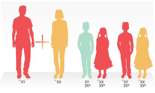 Máu khó đông di truyền cho con thế nào