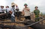 Quảng Nam vào cuộc làm rõ vụ phá rừng phòng hộ