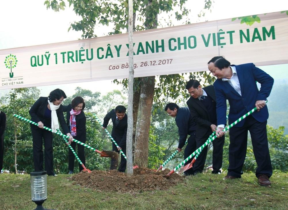 Vinamilk chung tay cùng người dân vừa trồng cây gây rừng vừa tạo sinh kế