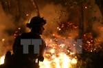 Thêm nhiều nạn nhân thiệt mạng trong thảm hỏa cháy rừng ở Mỹ