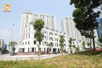 chinh sach ban hang hap dan du bao tao con sot tai roman plaza