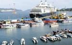 1,5 tỷ USD cho phát triển đội tàu vận tải biển đến 2020