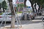 Đà Nẵng: Thí điểm mô hình bảo vệ cây xanh đô thị