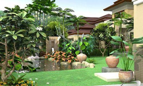 Những cách chọn, trồng cây xanh mang lại tài vận và may mắn (3)