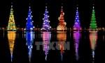 Cây thông Noel khổng lồ thắp sáng nhờ 3,1 triệu bóng đèn LED