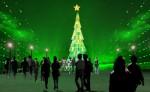 Xác lập kỷ lục cây thông Noel cao nhất Việt Nam