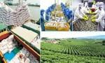 Nông nghiệp Việt Nam trước vận hội mới