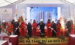 Khởi công dự án nhà ở xã hội Rice City Sông Hồng quy mô 500 căn hộ