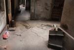 """Những ngôi nhà dưới """"hầm"""" ở Hà Nội"""
