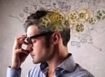 Tại sao bộ não con người thông minh nhất quả đất?