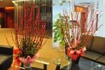 Những loại hoa đẹp giúp tô điểm phòng khách đón Tết