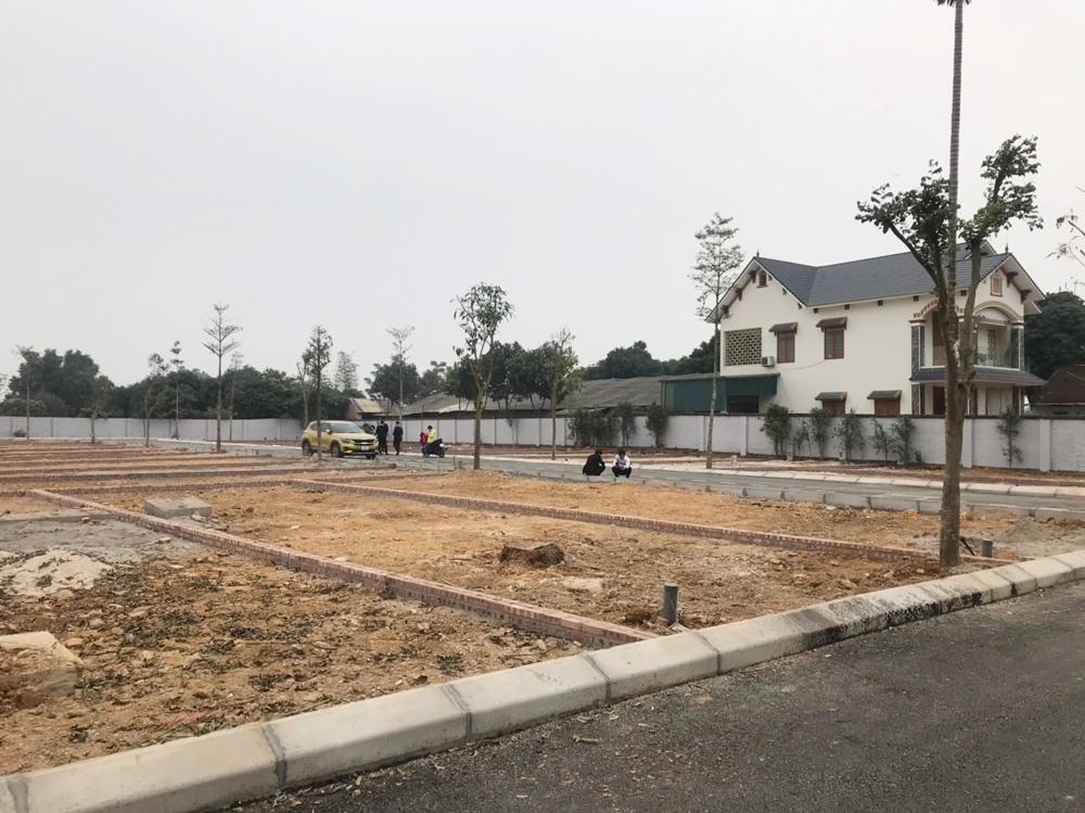 Quốc Oai (Hà Nội): Ai đang chỉ đạo phân lô, bán nền tại xã Phú Cát?