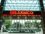 Geleximco đầu tư 2 dự án tại Bà Rịa – Vũng Tàu
