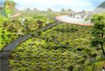 Hà Nội quy hoạch khu công viên nghĩa trang xanh