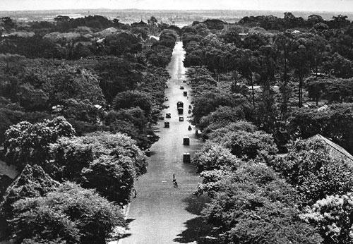 Đại lộ Lê Duẩn thời Pháp thuộc. Ảnh tư liệu.