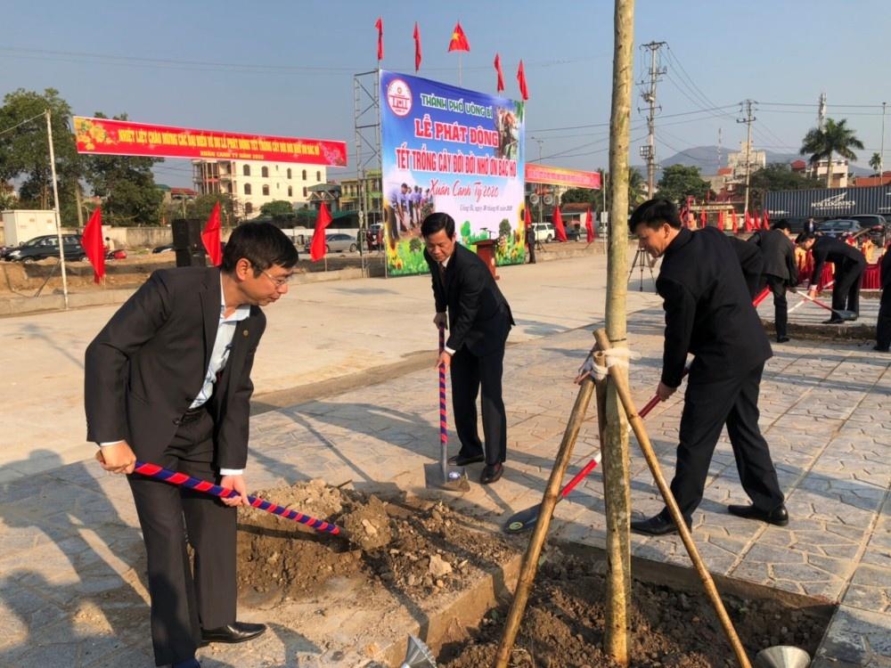 Uông Bí (Quảng Ninh): Địa phương đầu tiên trên cả nước phủ xanh đất trống khu đô thị chưa xây dựng