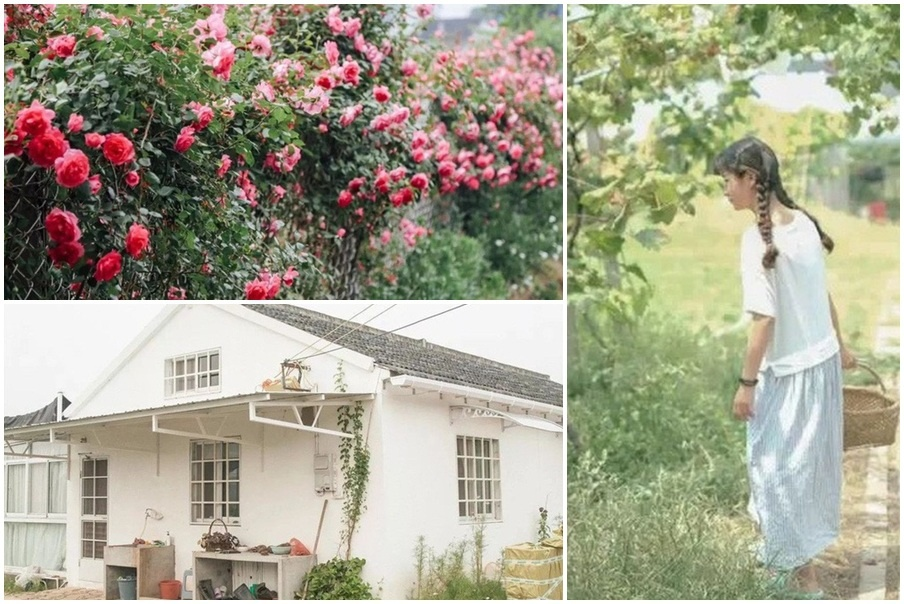 Cô gái dành hết tiền tiết kiệm về quê làm nhà vườn đẹp như cổ tích
