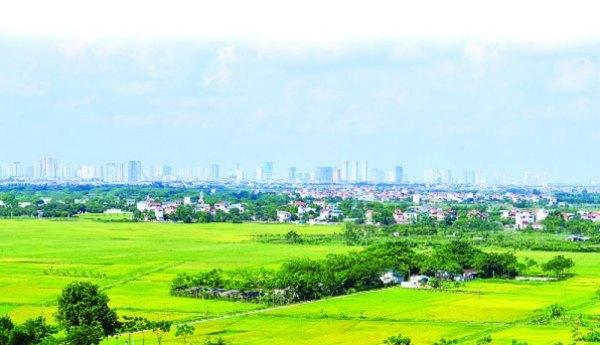 An Giang chuyển mục đích sử dụng hơn 70ha đất