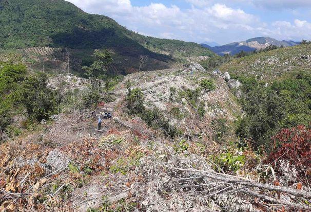 """Khánh Hòa: Cận cảnh rừng núi Đá Hang bị """"triệt hạ"""" không thương tiếc"""