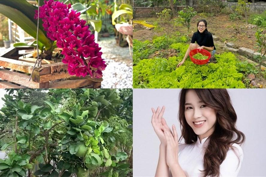 kham pha khu vuon o que nhieu rau va cay trai cua nha hoa hau do thi ha