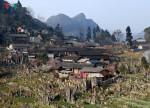 Ngẩn ngơ trước cảnh đào muộn bung nở ở Hà Giang