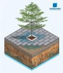 Gạch lát xuyên nước - Vật liệu Xanh cho thành phố xanh