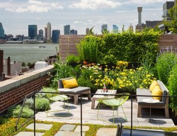 Những điều cần lưu ý khi thiết kế vườn trên sân thượng