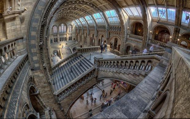 Tham quan 12 bảo tàng nổi tiếng thế giới mà không cần ra khỏi nhà