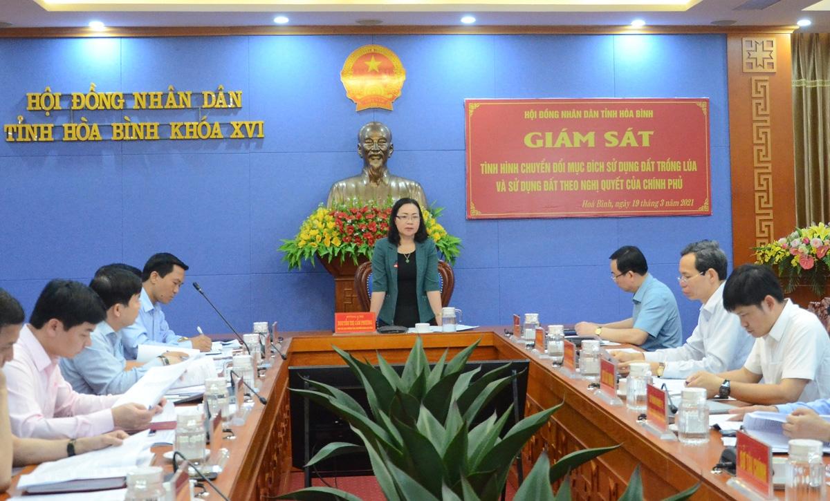 HĐND tỉnh Hòa Bình tăng cường giám sát tình hình quản lý, sử dụng đất trồng lúa