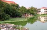 Cứu lấy những mặt hồ - Di sản của thành phố nghìn năm