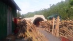 Quảng Ninh: Công ty Than Hồng Thái vận hành hầm lò không số hiệu