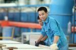Ngành sản xuất vật liệu xây dựng: Cạnh tranh và thay thế hàng ngoại nhập