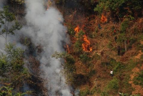 Tây Bắc: Nắng nóng liên tục, nhiều tỉnh có rừng bốc cháy