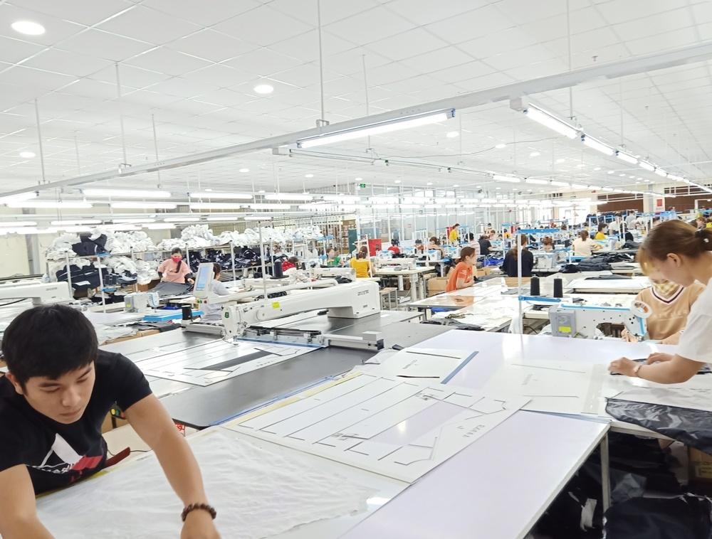 Quảng Trị: 55 doanh nghiệp gặp khó khăn do dịch bệnh Covid-19