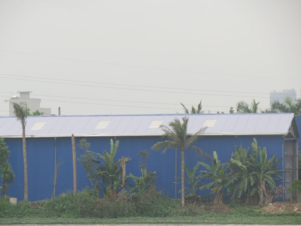 """Hải Phòng: Nhà xưởng """"khủng"""" xây dựng trên đất nông nghiệp"""