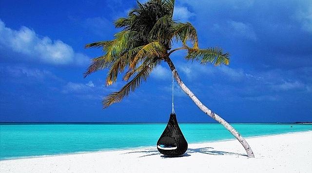 nha giau an do chi bon tien du lich maldives tron song than covid 19