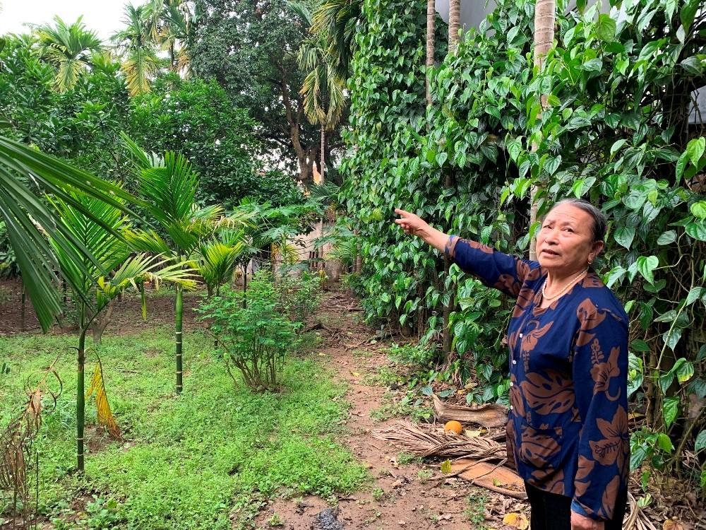 """Mê Linh (Hà Nội): Bị từ chối cấp sổ đỏ bởi kết luận """"trên trời rơi xuống"""" của UBND huyện?"""