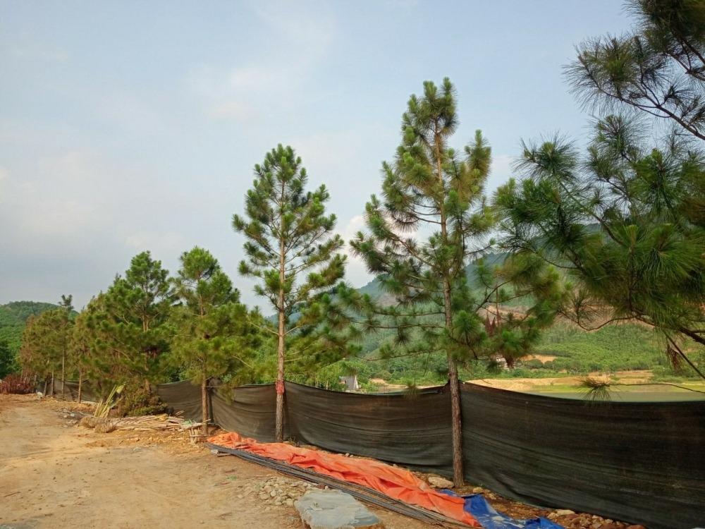 Phúc Yên (Vĩnh Phúc): Chính quyền xã Ngọc Thanh lên tiếng việc sử dụng đất tại hồ Trại Trâu