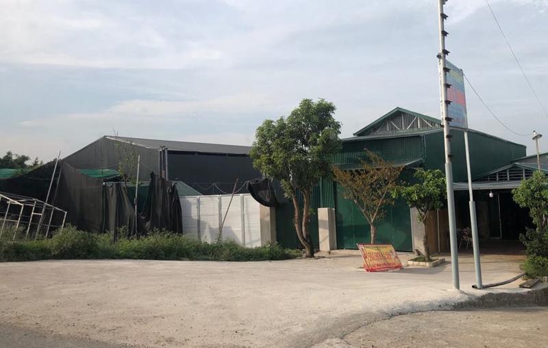 Xã Ninh Sở (Thường Tín – Hà Nội): La liệt công trình xây dựng trên hành lang bảo vệ đê điều, Chủ tịch xã né tránh cung cấp thông tin
