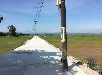 """Quảng Bình: Yêu cầu chủ đầu tư phối hợp để di dời các cột điện """"mọc"""" giữa đường"""
