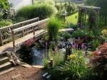 Nước cho không gian sân vườn