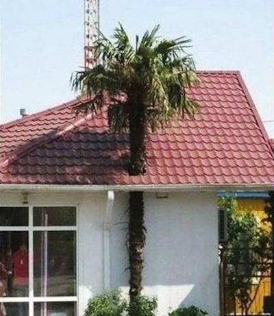 110029baoxaydung image001 Cùng nhìn qua những ngôi nhà bạn cần tránh xa nếu muốn sống an toàn