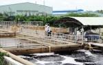 Bùn thải từ nhà máy chế biến thủy sản có nguy hại không?