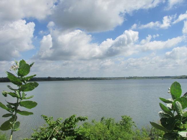 Tỉnh BR-VT yêu cầu quản lý nghiêm hành lang bảo vệ nguồn nước