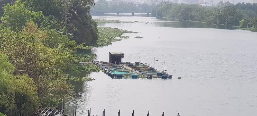 Thừa Thiên - Huế: Kêu gọi đầu tư dự án Tổ hợp thương mại dịch vụ và bến thuyền du lịch